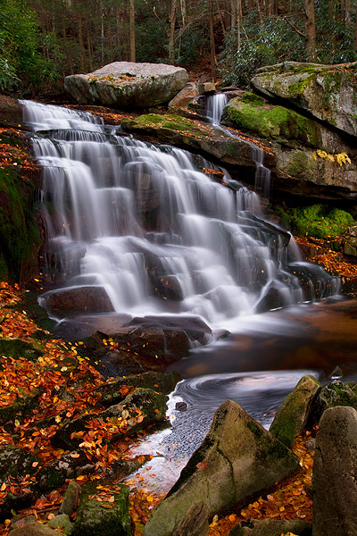 Autumn In Blackwater Falls State Park West Virginia